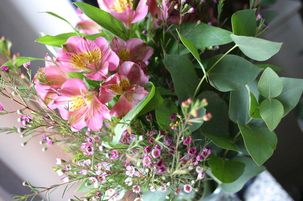 kvetiny_jaro