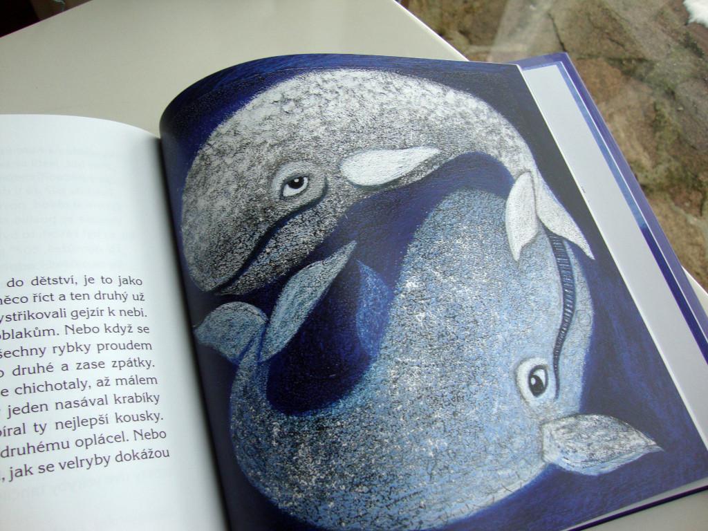 varvara_kniha o velrybim putovani_laska