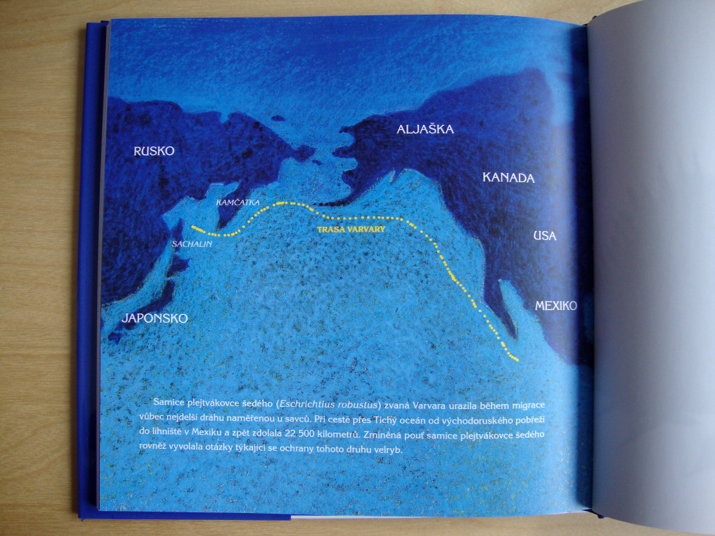 varvara_kniha o velrybim putovani_mapa