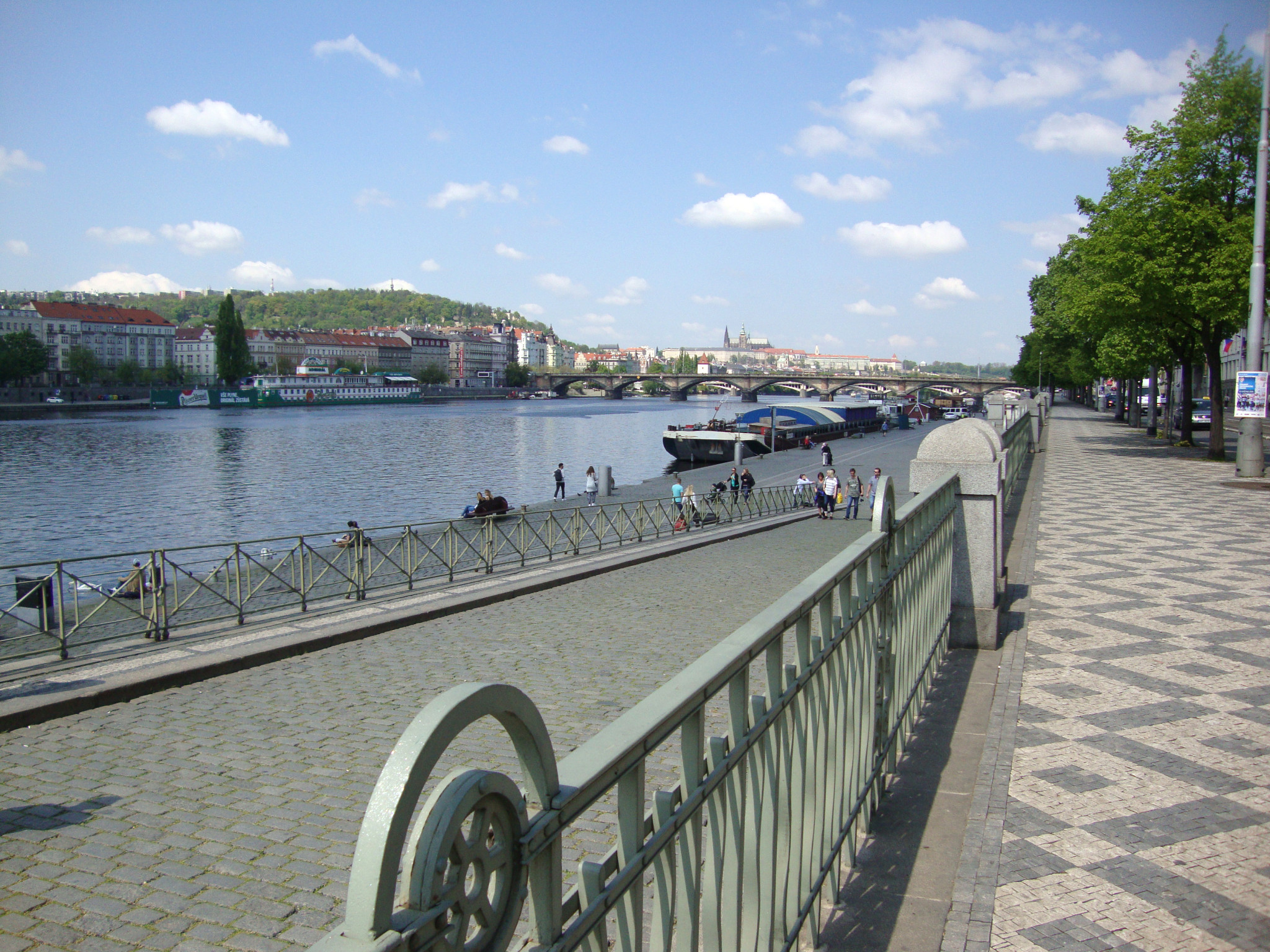 HERBIVORE_vyhled_vltava_naplavka
