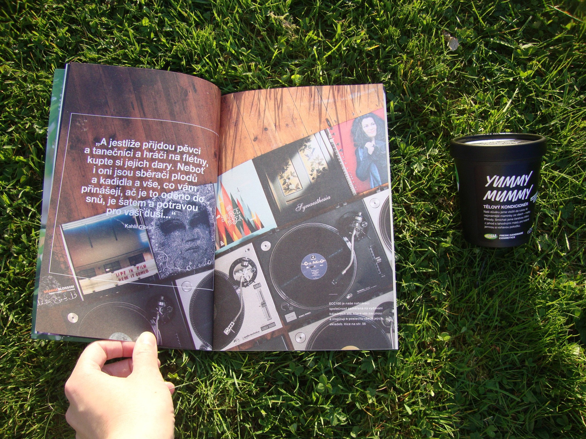 LUSH_hudba_CD